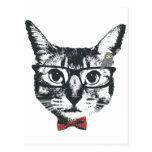 めが猫 cat with glasses 葉書き