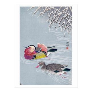 オシドリ, 小原古邨 Mandarin duck, Ohara Koson, Ukiyo-e Postcard
