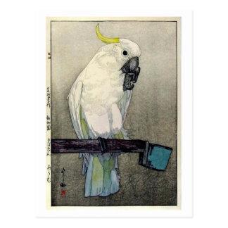 キバタン・オウム, Sulphur-crested cockatoo, Yoshida Postcard