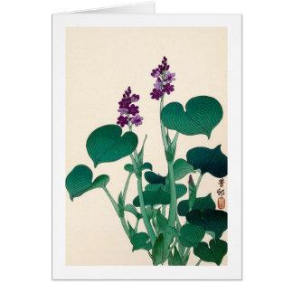 ギボウシの花, 古邨 Purple Flowering Hosta, Ohara Koson Card