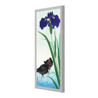 クイナとアヤメ, 古邨 Moorhens and Iris, Ohara Koson Canvas Print