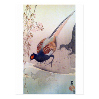 桜にキジ, 古邨 Pheasant and Cherry blossoms, Ohara Koson Postcard