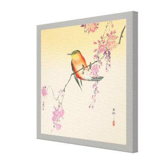 桜に鳥, 小原古邨 Bird & Cherry Blossoms, Ohara Koson Canvas Print