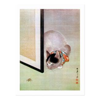 猫と蜘蛛, 東皐 Cat and Spider, Toko Postcard