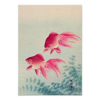 金魚, 古邨 Pair of Goldfish, Koson, Ukiyo-e, Woodcut Poster