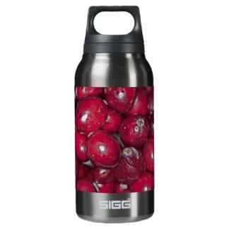 00132  Water Bottle: Cranberry Conversation Piece