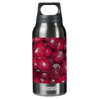 00132  Water Bottle: Cranberry Conversation Piece 0.3 Litre Insulated SIGG Thermos Water Bottle