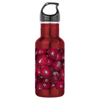 00132  Water Bottle: Cranberry Conversation Piece 532 Ml Water Bottle