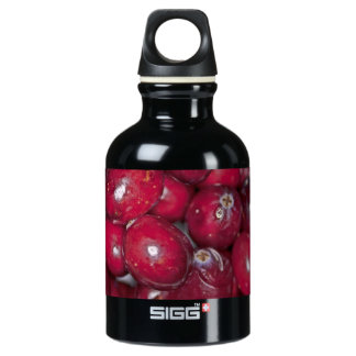 00132  Water Bottle: Cranberry Conversation Piece SIGG Traveller 0.3L Water Bottle