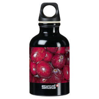 00132  Water Bottle: Cranberry Conversation Piece SIGG Traveller 0.3L Water Bottle