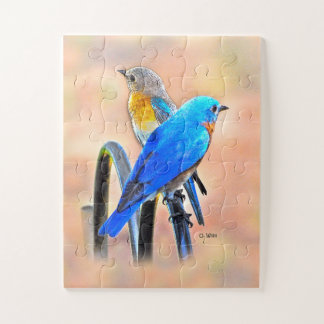 010 Bluebird Love Puzzle 11x14 Kids
