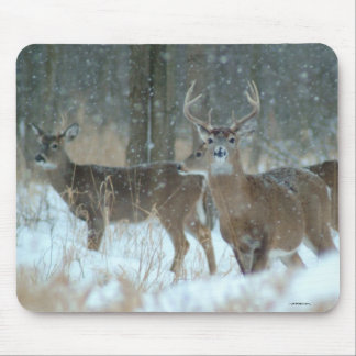 011110-57-AMP MOUSE PAD