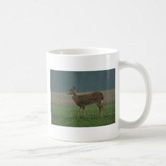 0113010-38CM COFFEE MUG