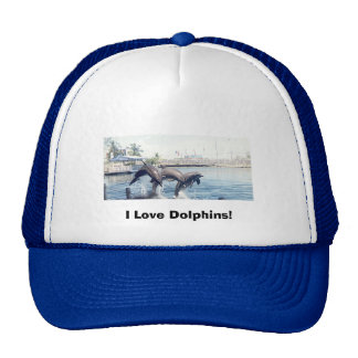 01dolphins, I Love Dolphins! Mesh Hats