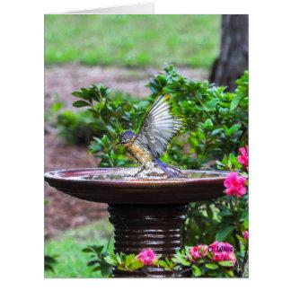 030 Bluebird Bath Big Card 8.5x11 Matte