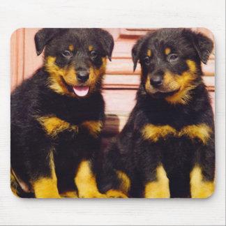 !-03-Royal-Canin-Calendar-Rottweiler-wall-TR[1] Mouse Pad