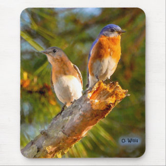 040 Bluebird Courtship 7.75x9.25 Mouse Pad