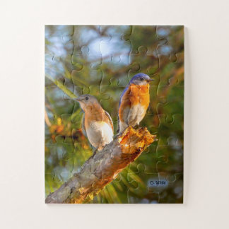 040 Bluebird Courtship Puzzle 11x14 Kids