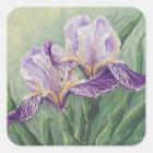 0455 Purple Irises Square Sticker