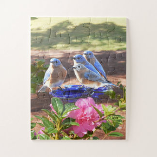 050 Bluebirds Forever Puzzle 11x14 Kids