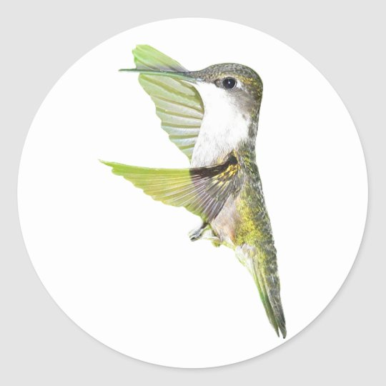 07-20-06 Hummingbirds0033ac Classic Round Sticker