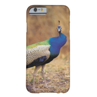 0 3 BARELY THERE iPhone 6 CASE