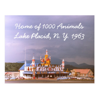 1000 Animals Lake Placid Postcard