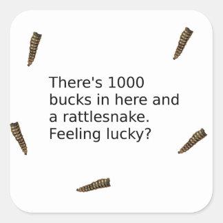 1000 Bucks And a Rattlesnake (Feeling Lucky?) Square Sticker
