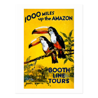 1000 Miles Up The Amazon Vintage Travel Poster Postcard