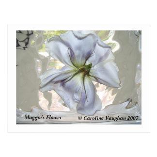 100_0709, Maggie's Flower,  Caroline Vaughan 2007 Postcard