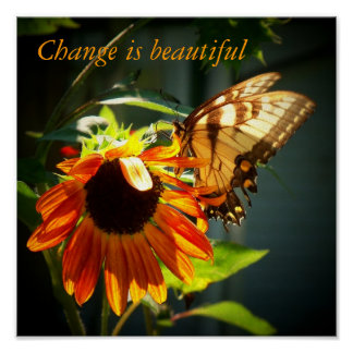 100_1974, Change is beautiful Poster