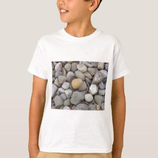 100_5333 T-Shirt