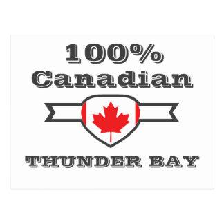 100% Thunder Bay Postcard