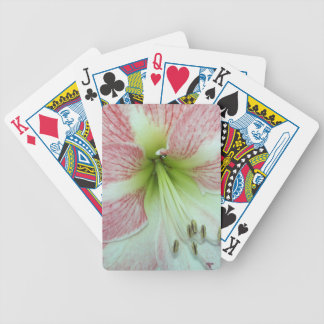 104a Amaryllis Apple Blossom open 2 Bicycle Playing Cards