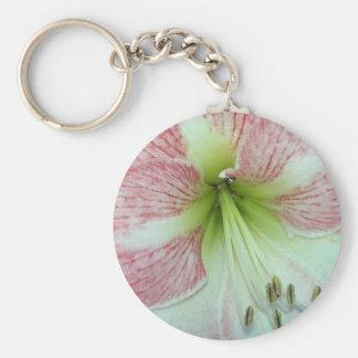 104a Amaryllis Apple Blossom open 2 Key Ring