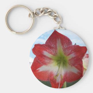106a Amaryllis red and white MegaStar2 Key Ring