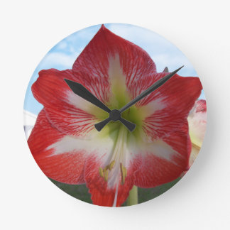 106a Amaryllis red and white MegaStar2 Round Clock