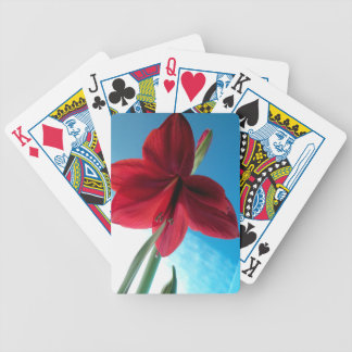 108a Vivid red Amaryllis Flower Bicycle Playing Cards