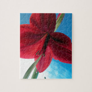 108a Vivid red Amaryllis Flower Jigsaw Puzzle