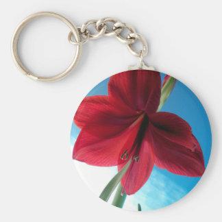 108a Vivid red Amaryllis Flower Key Ring