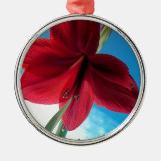 108a Vivid red Amaryllis Flower Metal Ornament
