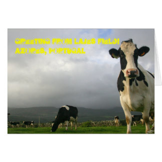 10,000 Cows Can't be Wrong Greeting Card