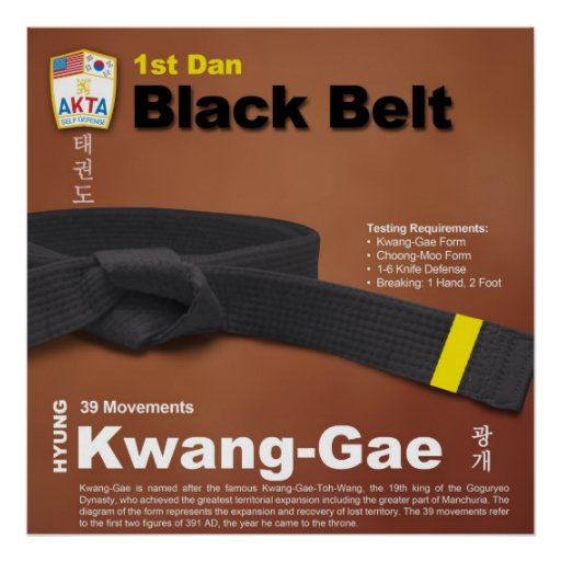 2nd dan black belt essay Tae kwon do black belt essay kevin l ryburn at nine years old, as a typical kid growing up in suburban denver, i was exposed to martial arts like most kids, via movies and television.