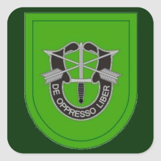 10th Special Forces Grp Flash DUI Stickers