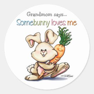 10x10-some-bunny round sticker