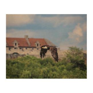 10x8 Bald Eagle passing Fort Ticonderoga Wood Wall Art