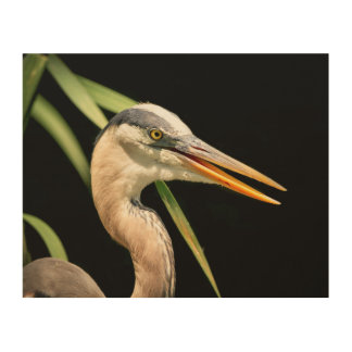 10x8 Great Blue Heron Wood Wall Art