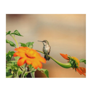 10x8 Hummingbird on a flowering plant Wood Wall Decor