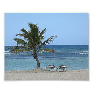 10x8 Palm Tree on the Beach Photo Art
