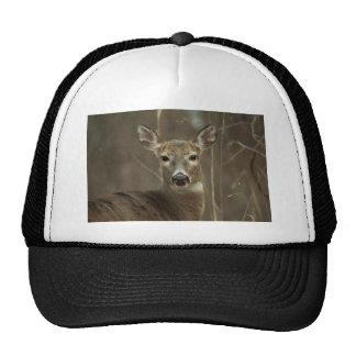 120310-16H HATS